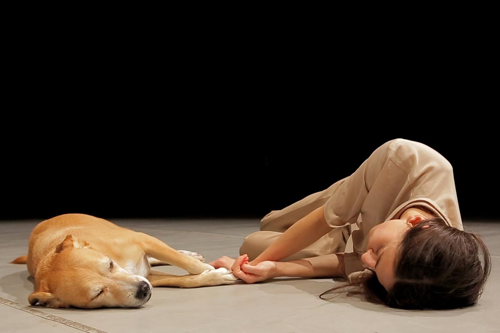 Bau #1 An interactive piece / Barbara Berti / TIR Danza